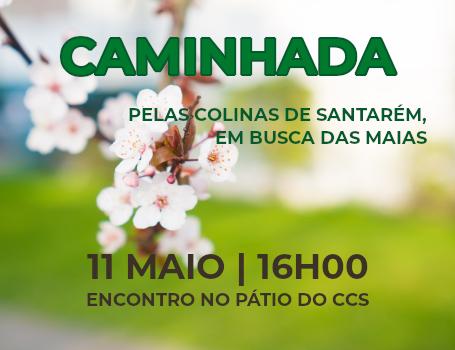 CAMINHADA – Caminheiros do CCS